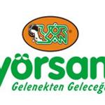 yorsan2